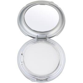 Kryolan Dermacolor Light Day kompaktní pudr se zrcátkem a aplikátorem odstín TD 1  10 g