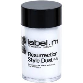label.m Complete polvos capilares para dar volumen desde las raíces  3,5 g