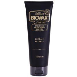 L'biotica Biovax Glamour Caviar výživný šampon s kaviárem  200 ml