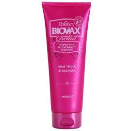 L'biotica Biovax Glamour Orchid šampon pro hladké a lesklé vlasy  200 ml
