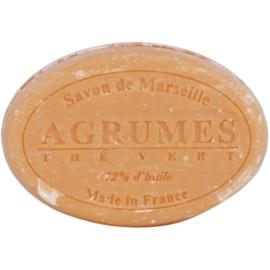 Le Chatelard 1802 Citrus Fruits & Green Tea kulaté francouzské přírodní mýdlo  100 g