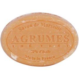 Le Chatelard 1802 Citrus Fruits & Green Tea guľaté francúzske prírodné mydlo  100 g