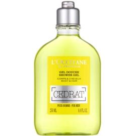 L'Occitane Cedrat sprchový gel na tělo a vlasy  250 ml