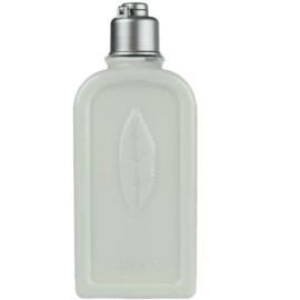 L'Occitane Verveine Körpermilch  250 ml