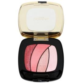 L'Oréal Paris Color Riche Shocking oční stíny s aplikátorem odstín S10  2,5 g