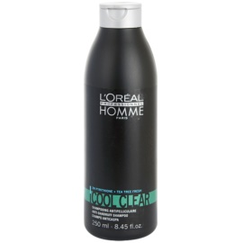L'Oréal Professionnel Homme Cool Clear Shampoo gegen Schuppen  250 ml