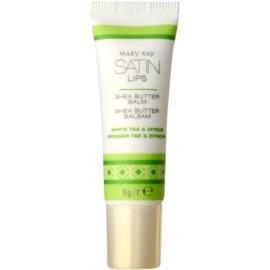 Mary Kay Satin Lips Lippenbalsam mit Bambus Butter  8 g