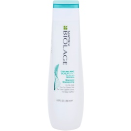 Matrix Biolage ScalpThérapie New sampon a gyorsan zsírosodó hajra  250 ml