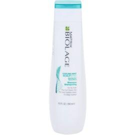Matrix Biolage ScalpThérapie New šampon za hitro mastne lase  250 ml