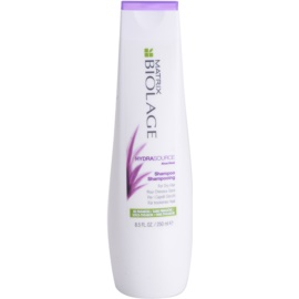 Matrix Biolage Hydra Source šampon za suhe lase  250 ml
