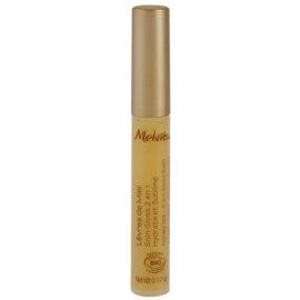 Melvita Apicosma Gloss und Lippenbalsam 2in1  5 ml