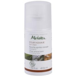 Melvita Pour Homme zklidňující balzám po holení  50 ml