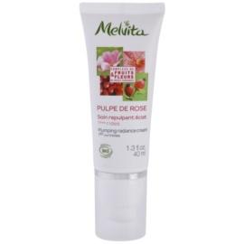 Melvita Pulpe de Rose krem rozjaśniający przeciw pierwszym oznakom starzenia skóry  40 ml
