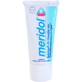 Meridol Dental Care Zahnpasta unterstützt die Regeneration von gereiztem Zahnfleisch  20 ml