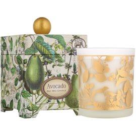 Michel Design Works Avocado vonná svíčka 397 g ve skle (65-80 Hours)