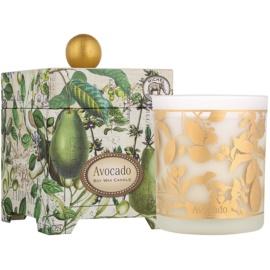 Michel Design Works Avocado illatos gyertya  397 g üvegben (65-80 Hours)