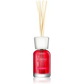 Millefiori Natural Mela & Cannella dyfuzor zapachowy z napełnieniem 100 ml
