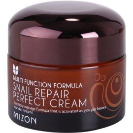 Mizon Multi Function Formula  krem do twarzy z ekstraktem ze śluzu z ślimaka 60%  50 ml