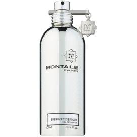 Montale Embruns d'Essaouira eau de parfum teszter unisex 100 ml