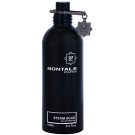 Montale Steam Aoud parfémovaná voda tester unisex 100 ml