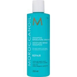 Moroccanoil Moisture Repair šampon za poškodovane in kemično obdelane lase  250 ml