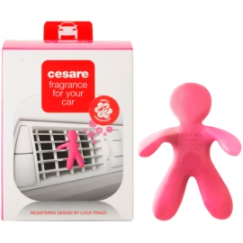 Mr & Mrs Fragrance Cesare Citrus & Musk parfum pentru masina 1 buc I.