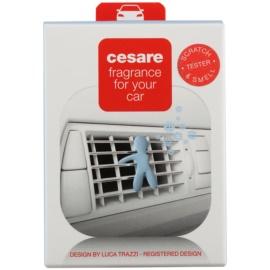 Mr & Mrs Fragrance Friends Cesare Fragrance For Car Lufterfrischer 1 St.  (Cashmare)