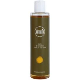 Naturativ Men  vlasový šampon s hydratačním účinkem  250 ml