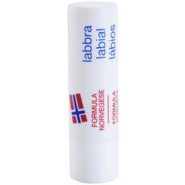 Neutrogena Lip Care balzám na rty SPF 4  4,8 g