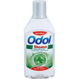 Odol Stoma Paradentol elixir bocal para dentes e gengivas saudáveis  250 ml