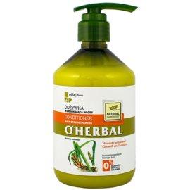 O'Herbal Acorus Calamus odżywka wzmacniająca do włosów słabych  500 ml
