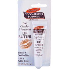 Palmer's Face & Lip Cocoa Butter Formula бальзам   для сухої шкіри губ присмак Dark Chocolate & Peppermint  10 гр