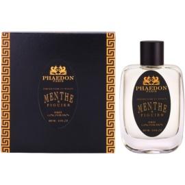 Phaedon Mint and Fig Huisparfum 100 ml