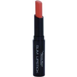 Pierre René Slim Lipstick Rich dlouhotrvající rtěnka odstín 10 Rosy  2 g