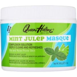 Queen Helene Mint Julep Maske für fettige Haut mit Neigung zu Akne  340 g