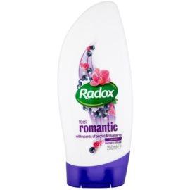 Radox Feel Indulged Feel Romantic crema de ducha Scents of Orchid & Blueberry 250 ml