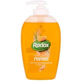 Radox Feel Fresh Feel Revived Liquid Soap For Hands Mandarin & Lemongrass 250 ml