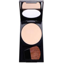 Revlon Cosmetics Photoready Photoready™ pudr pohlcující lesk (mastnotu) odstín 010 Fair/Light 7,1 g