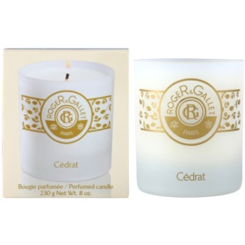 Roger & Gallet Bougie Parfumée ароматизована свічка  230 гр