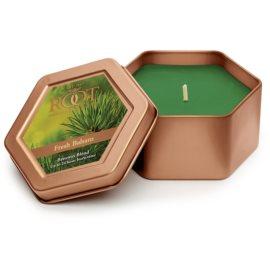 Root Candles Fresh Balsam illatos gyertya  113 g alumínium dobozban