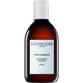 Sachajuan Cleanse and Care korpásodás elleni sampon  250 ml
