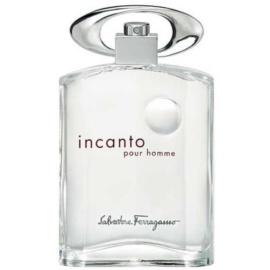 Salvatore Ferragamo Incanto Pour Homme Eau de Toilette voor Mannen 100 ml