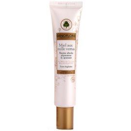 Sanoflore Visage feuchtigkeitsspendender Balsam mit regenerierender Wirkung  40 ml