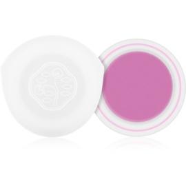 Shiseido Eyes Paperlight fard de pleoape cremos culoare Shobu Purple 6 g