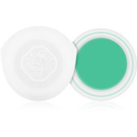Shiseido Eyes Paperlight fard de pleoape cremos culoare Hisui Green 6 g