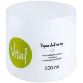 Stapiz Vital obnovující maska pro poškozené vlasy  500 ml