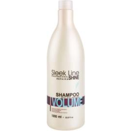 Stapiz Sleek Line Volume hydratační šampon pro jemné vlasy  1000 ml
