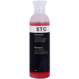 STC Hair champô anticaspa  250 ml