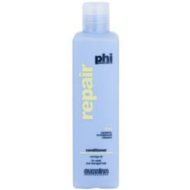 Subrina Professional PHI Repair acondicionador renovador para cabello maltratado o dañado  250 ml
