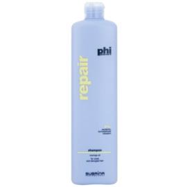 Subrina Professional PHI Repair champô renovador para cabelo danificado  1000 ml